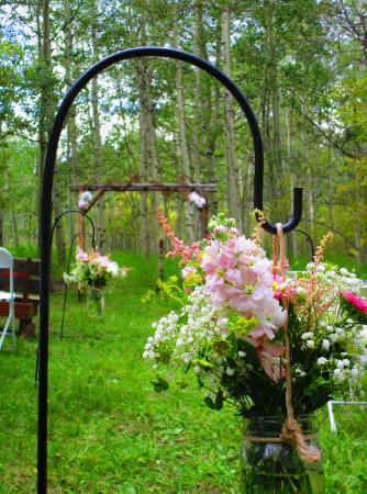 A Gorgeous Colorado Wedding Venue ~ the Historic Pines Ranch Aspen Grove Ceremony Site